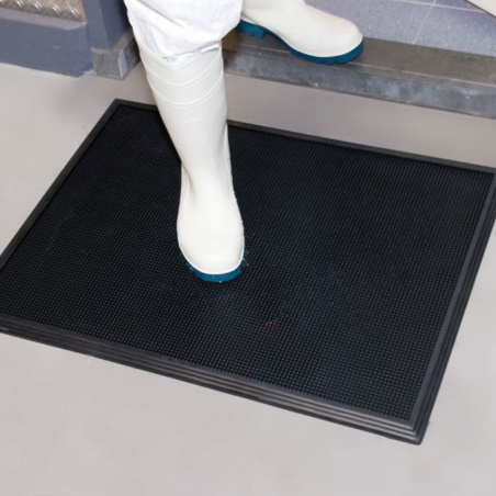 Tapis-desinfectant
